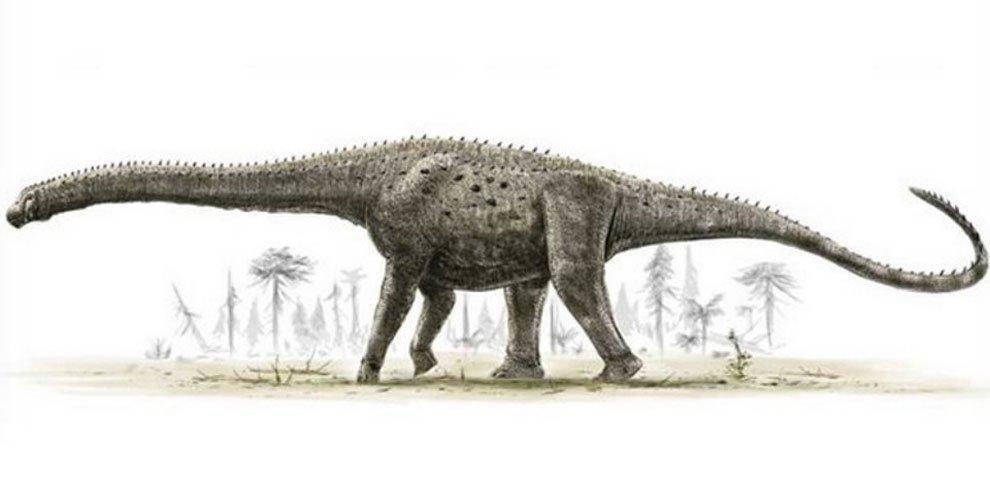 Resultado de imagem para Argentinossauro