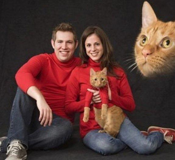 Amor com humor: confira algumas fotos incomuns de casais apaixonados