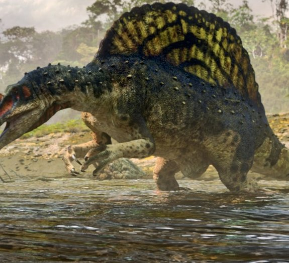 7 dos maiores animais que já habitaram o nosso planeta