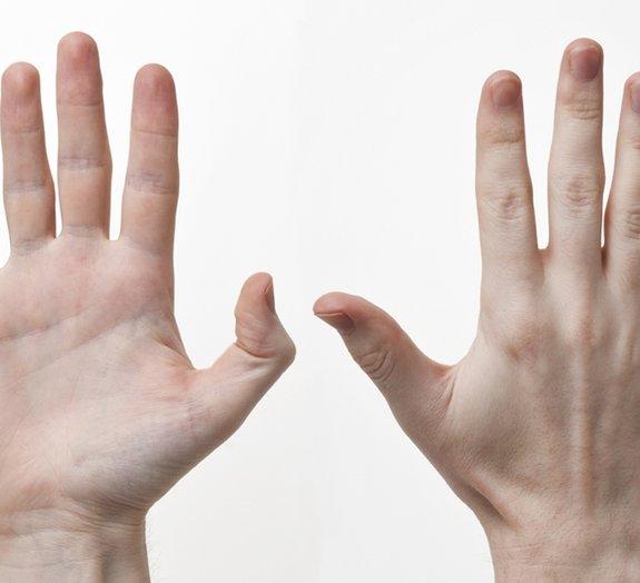 4 curiosidades sobre nossas mãos