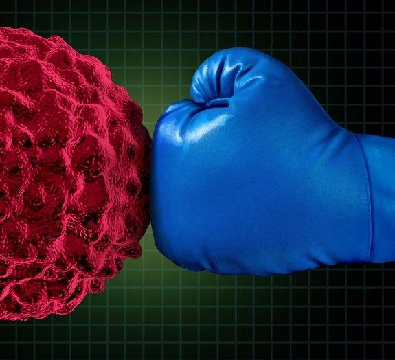 Este é o nosso incrível sistema imunológico: veja fotos surpreendentes