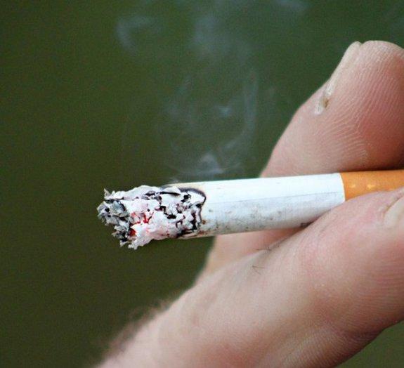Sinistro: veja a diferença entre os pulmões de um fumante e um não fumante