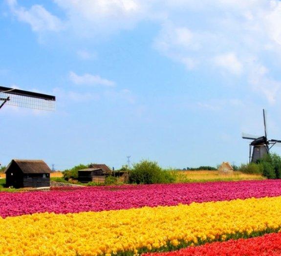 Próxima Parada: Holanda – viaje pelo país da maconha e dos passeios de bike