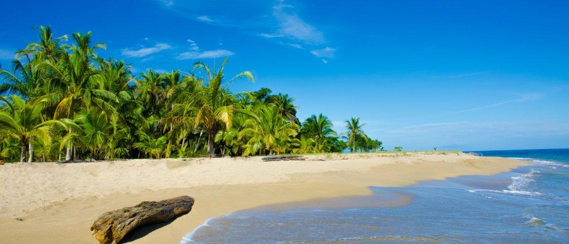 Próxima Parada: Costa Rica – conheça mais desse país de natureza fantástica