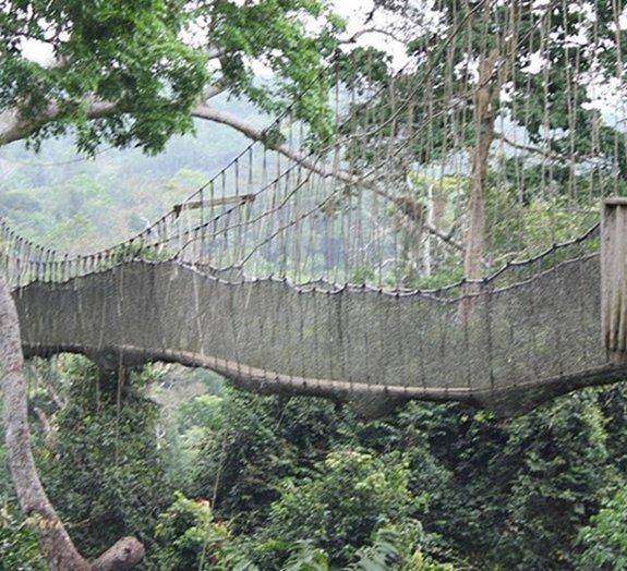 Confira 8 das passarelas suspensas mais incríveis do mundo