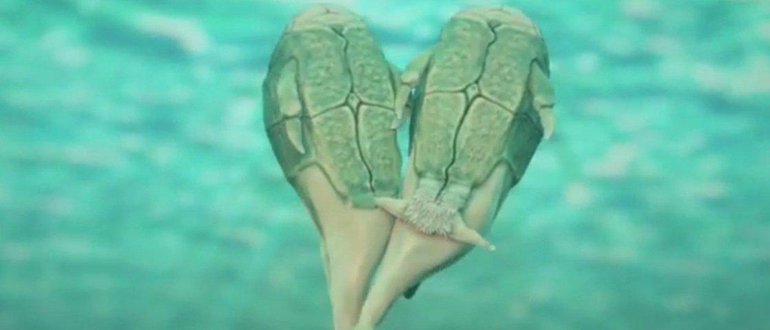 Peixes já faziam sexo há 350 milhões de anos