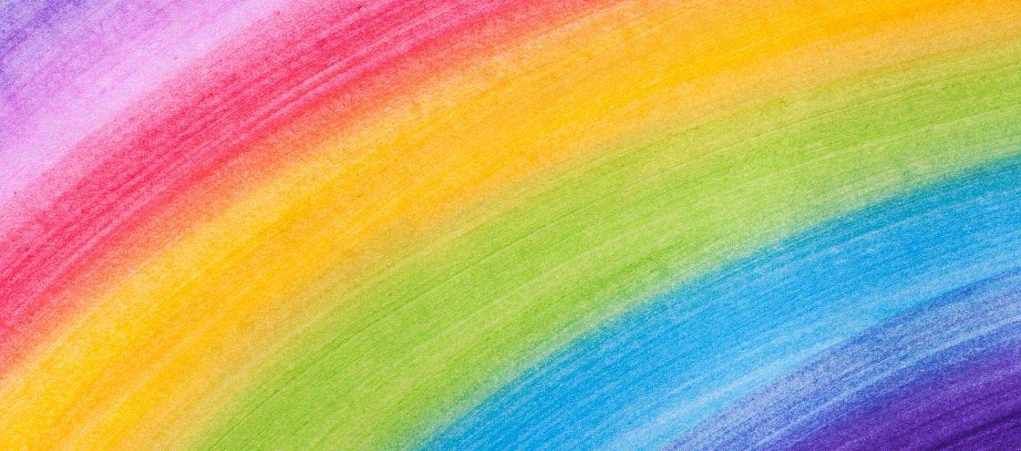 15 animais em que a natureza caprichou no colorido