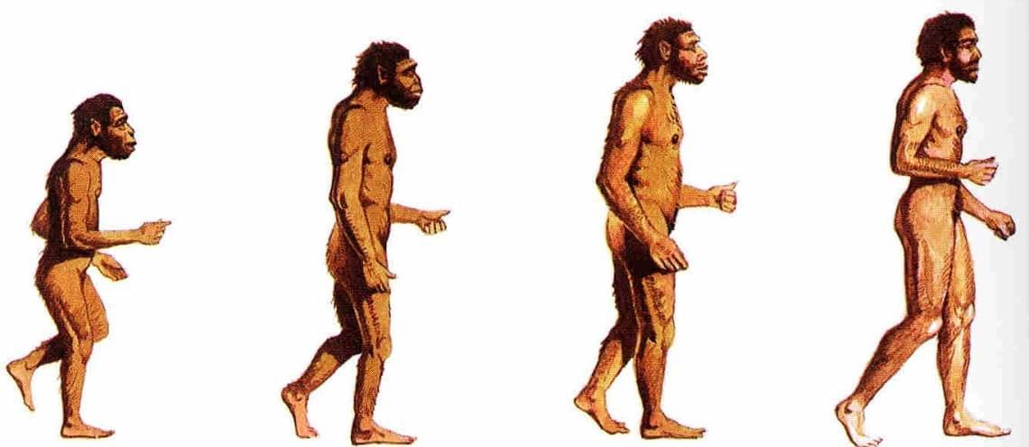 Cientistas podem ter encontrado espécie humana desconhecida