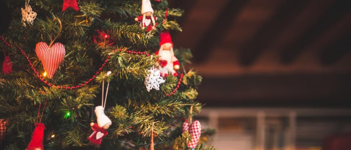Prêmio Mega Curioso de criatividade natalina: 15 árvores que se destacaram