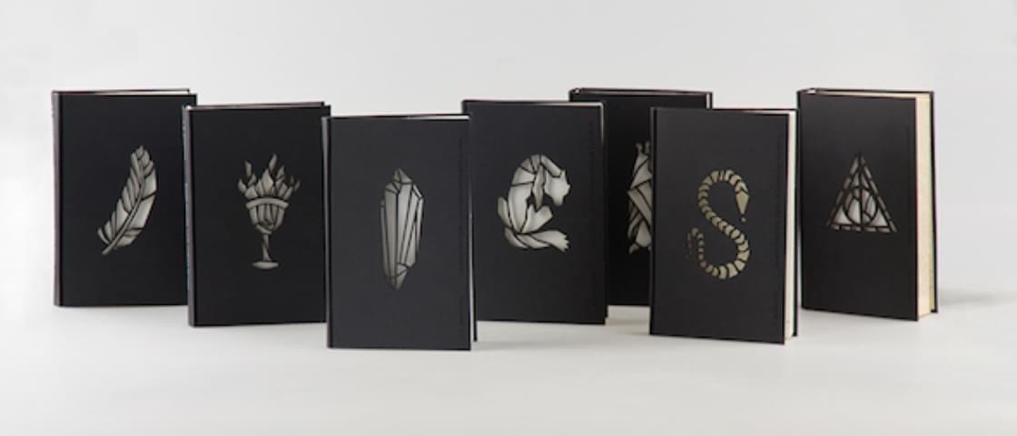 Estudante recria os 7 livros da saga Harry Potter com muita criatividade