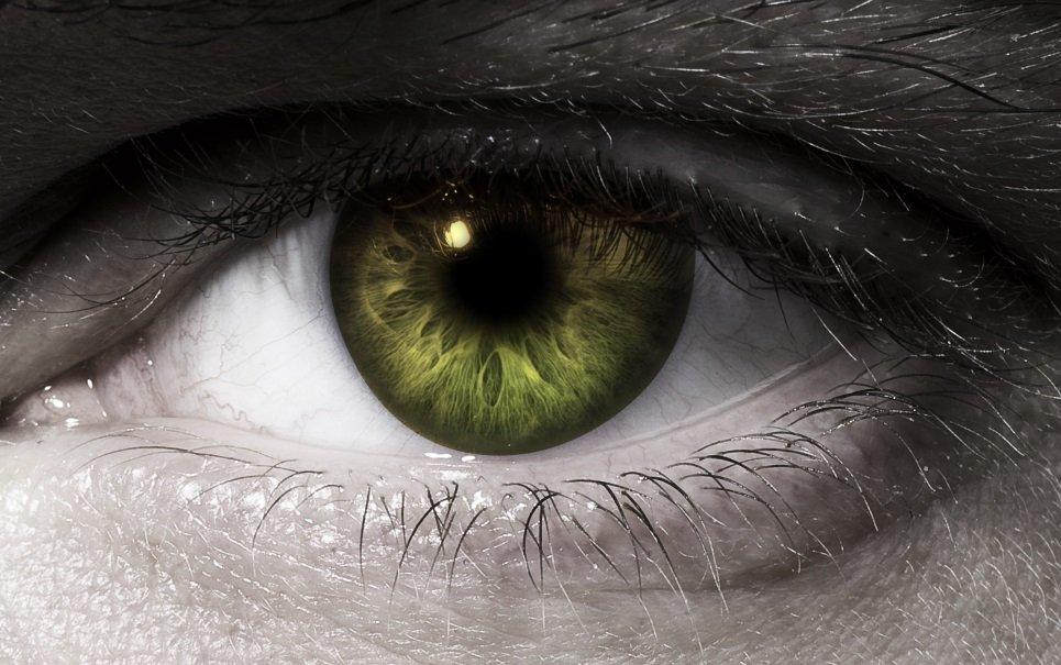Tem Na Web - Conheça a origem da expressão olho por olho, dente por dente