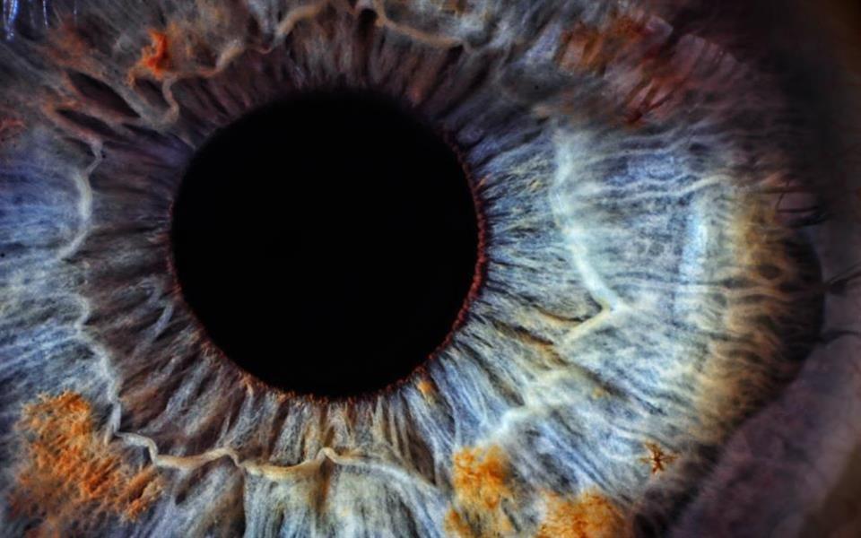 31 fatos insanos sobre os olhos