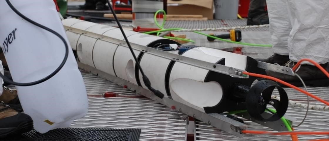 Robô encontra vida marinha nas profundezas da Antártica