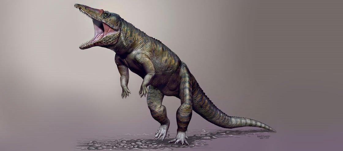 Conheça o crocodilo-monstro que apavorava a Terra há 230 milhões de anos