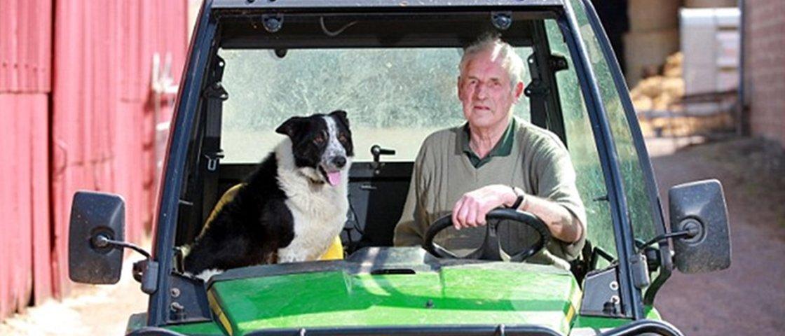 Cachorro assume controle de trator e leva veículo para estrada