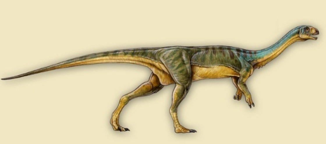 Ornitorrinco jurássico: dinossauro esquisitão é descoberto no Chile