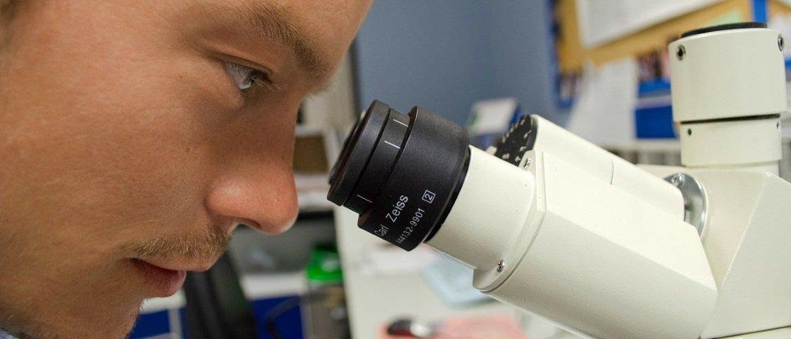 Cientistas americanos descobrem existência de tecido imunológico no cérebro