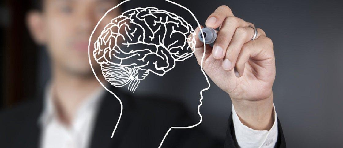 Cientistas descobrem neurônios que funcionam como 'velocímetro cerebral'