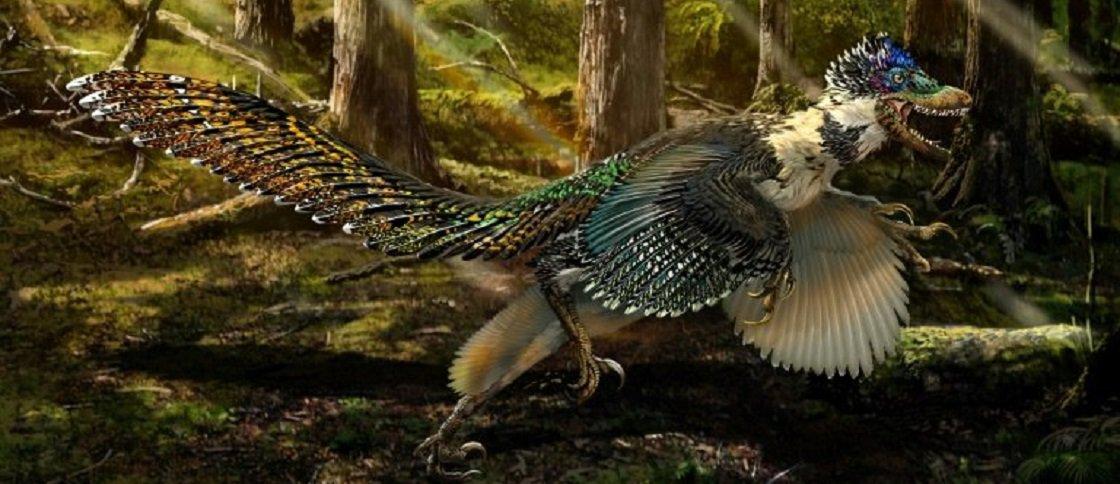 Estudo aponta que dinossauro astro de 'Jurassic Park' teria penas e asas