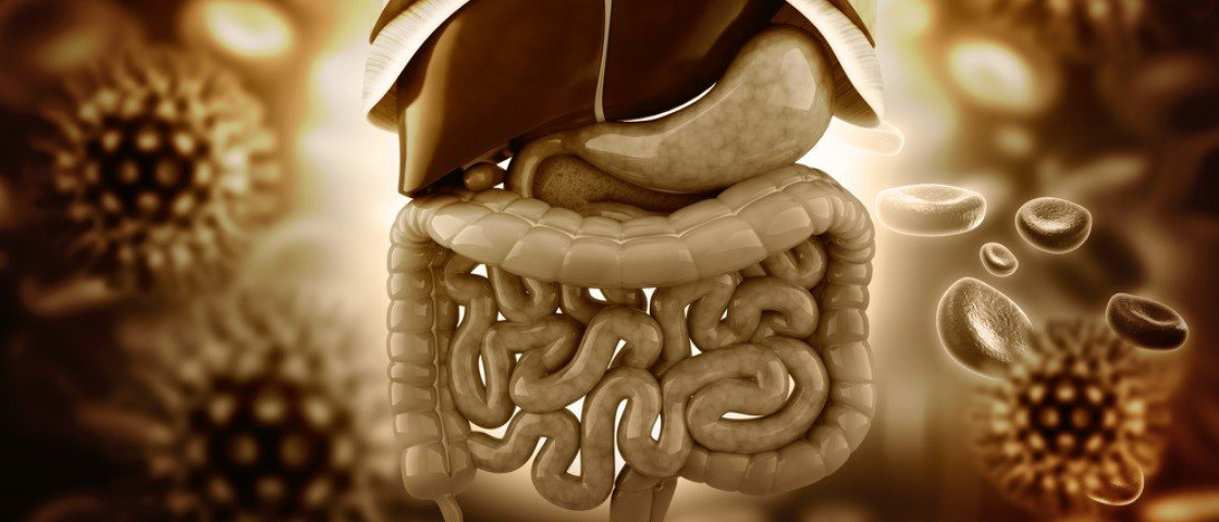 Só para quem tem estômago: veja como é o processo de digestão [vídeo]