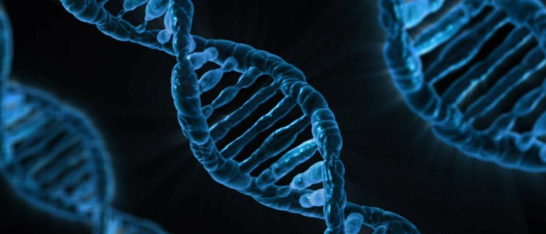 Cientistas podem ter descoberto que orientação sexual é genética