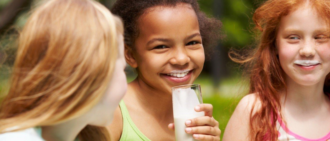 Como o leite que consumimos todos os dias chega até a nossa mesa?