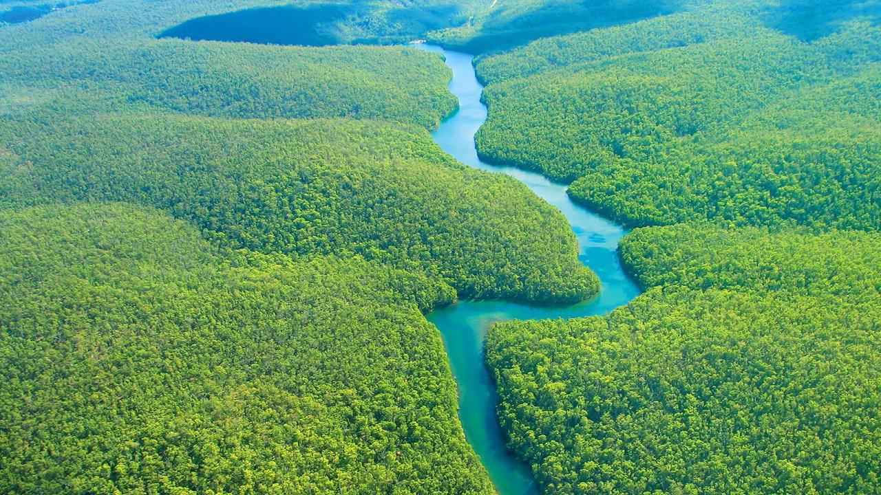 Afinal, é verdade que parte da Amazônia pertence aos Estados Unidos?