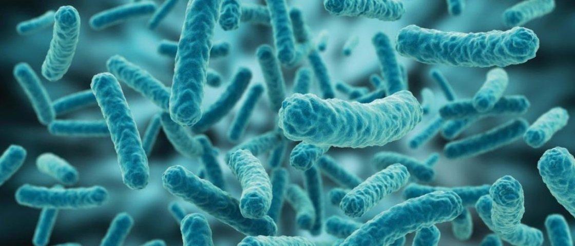 Pesquisa sugere que bactéria vaginal pode funcionar como camisinha natural