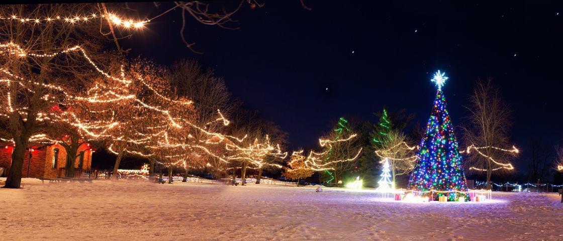 Tem Na Web - Existe um dia correto para montar a árvore de Natal?