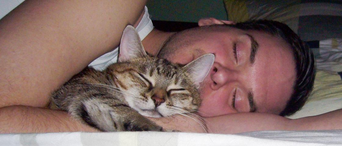 Pesquisa comprova que dividir a cama com animal de estimação melhora o sono