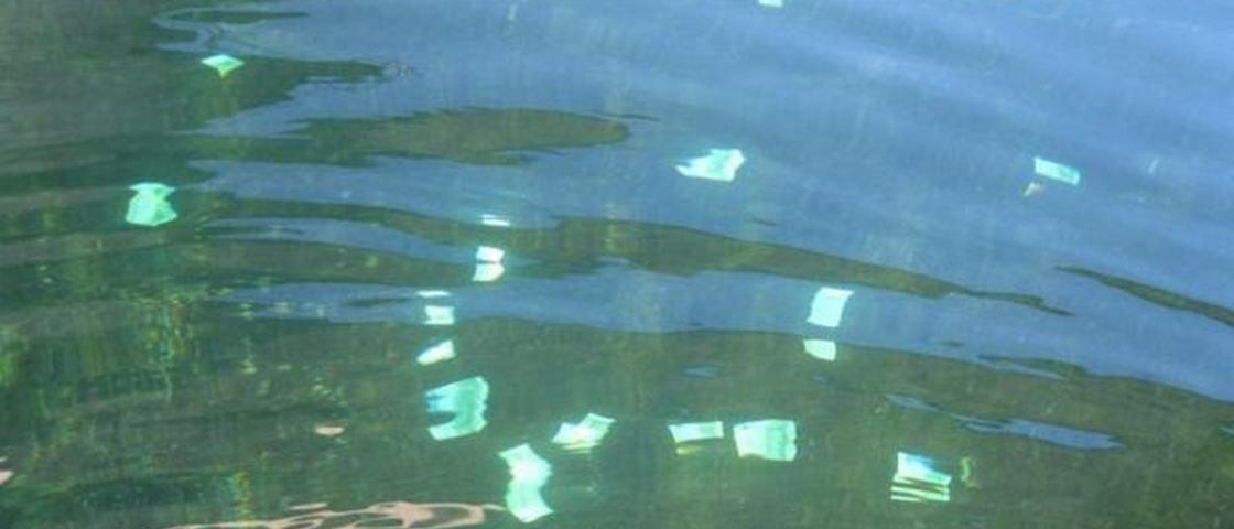 Garoto austríaco 'pesca' mais de 100 mil euros no rio Danúbio