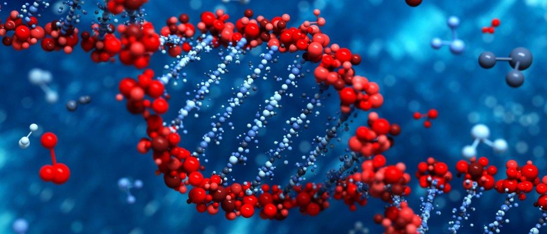 Cientistas podem ter identificado genes responsáveis pelo envelhecimento