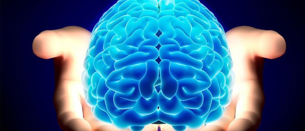Cérebro humano teria capacidade para 'armazenar' a internet inteira