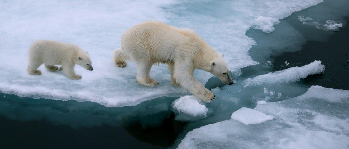 4 efeitos perturbadores do El Niño em todo o planeta