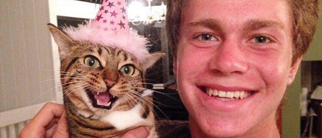 11 reações que o seu gato pode ter na própria festa de aniversário