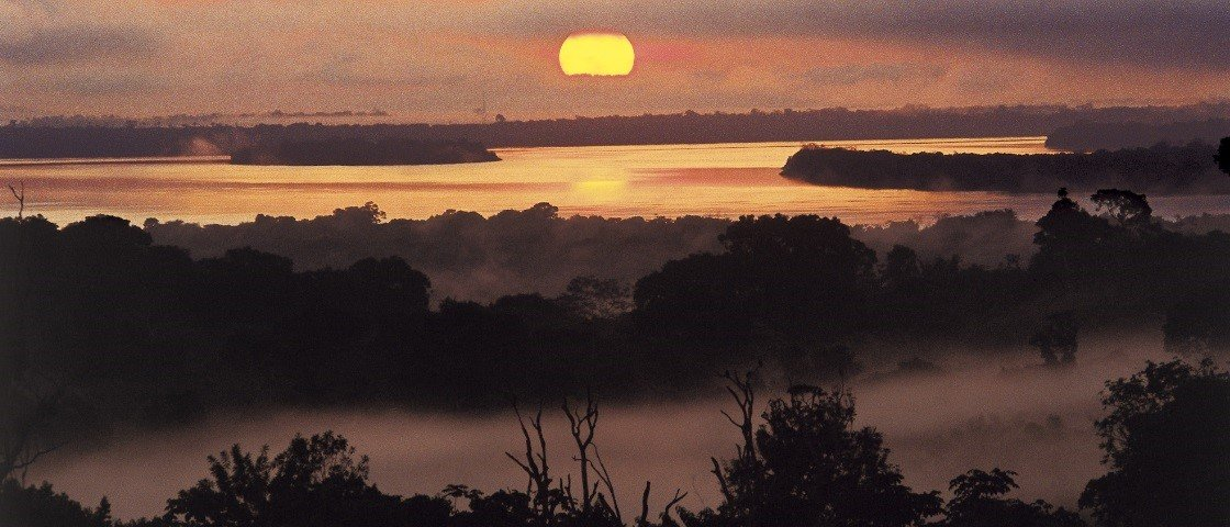 20 curiosidades fascinantes sobre a Amazônia