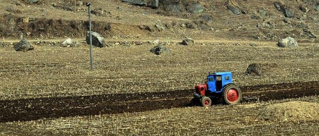 Coreia do Norte exige que população guarde seus cocôs para fazer adubo