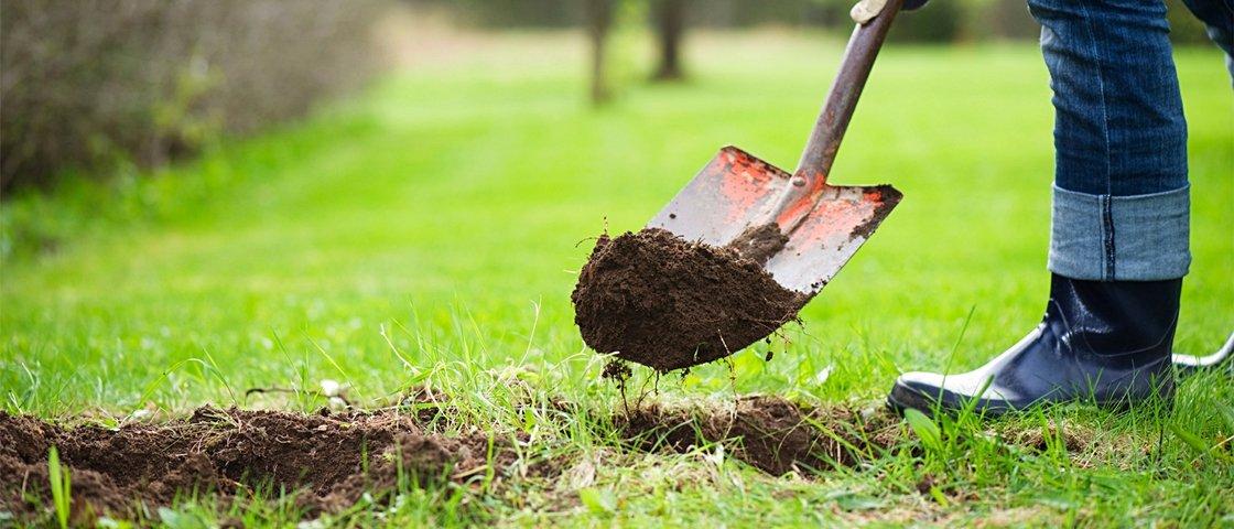 15 das coisas mais improváveis já desenterradas de quintais