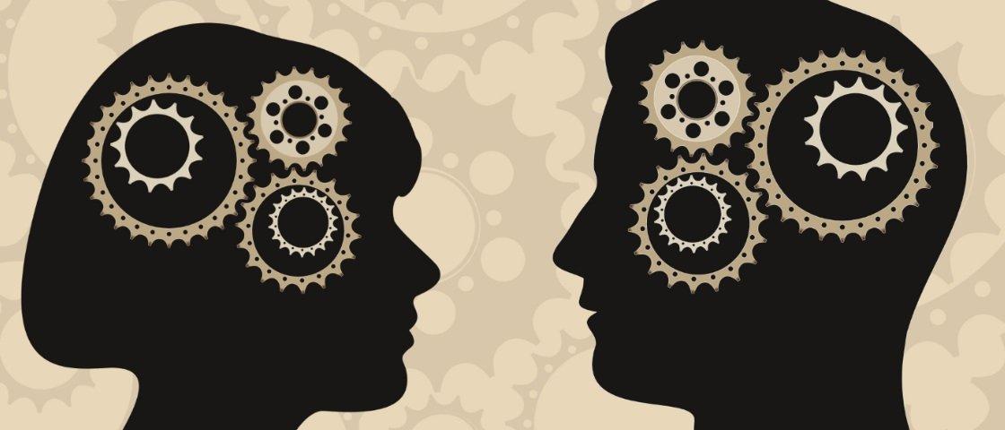 Mulheres e homens têm cérebros diferentes? Veja o que a Ciência tem a dizer