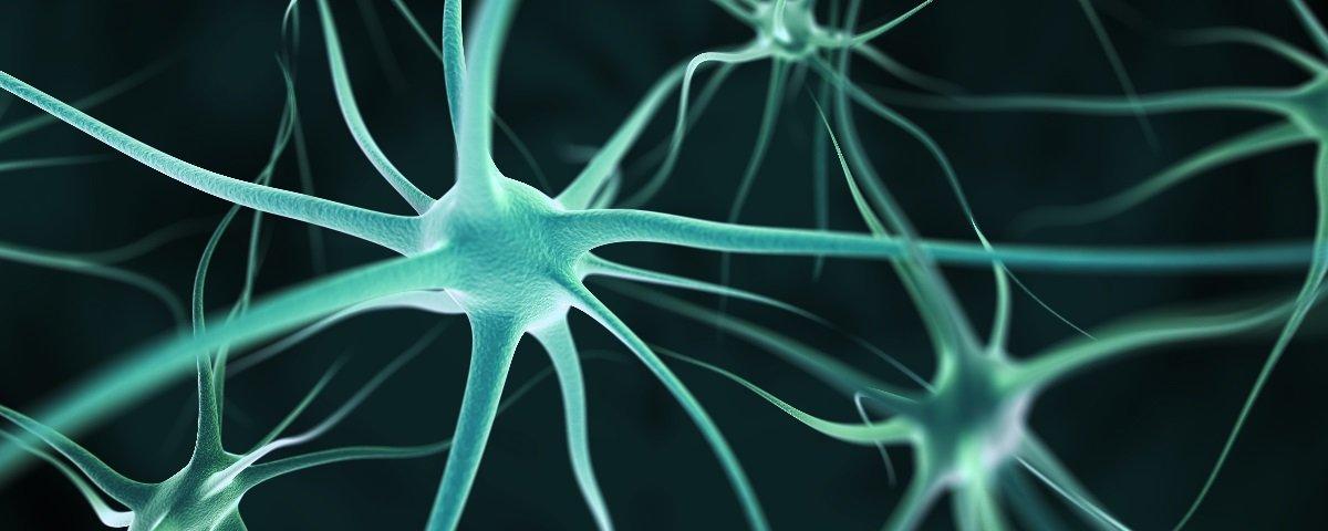 Sabia que seu cérebro opera em 11 dimensões?