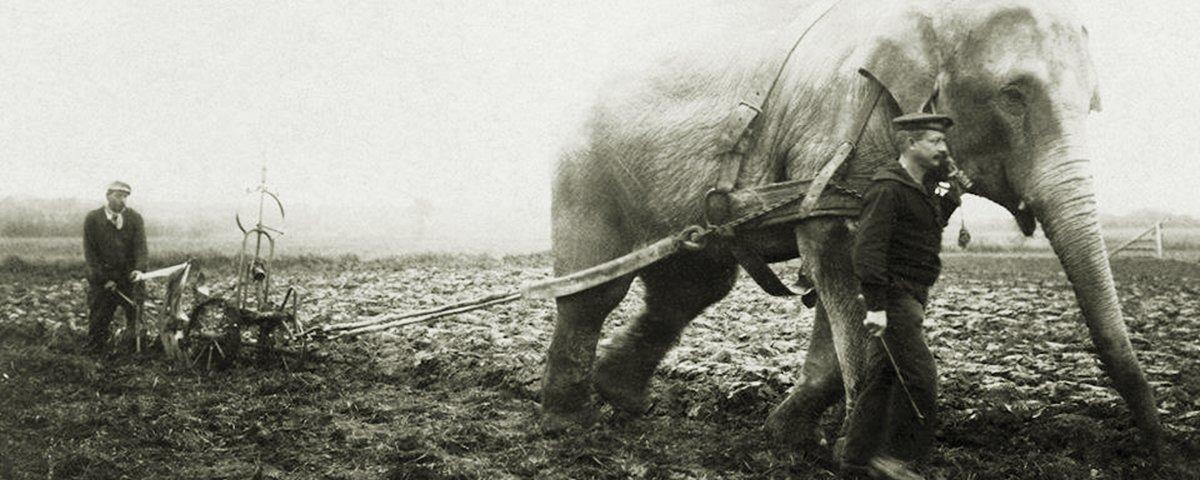 Mais 17 imagens raras que vão aprimorar a sua percepção sobre o passado