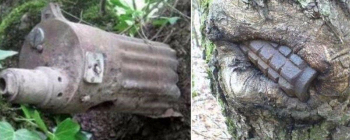 """Incrível: armas da 2ª Guerra Mundial estão """"brotando"""" em bosque na Rússia"""