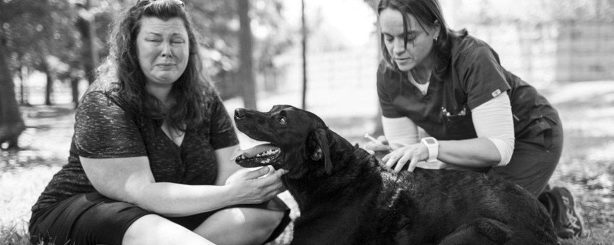 13 cenas impactantes que descrevem o sentido de empatia