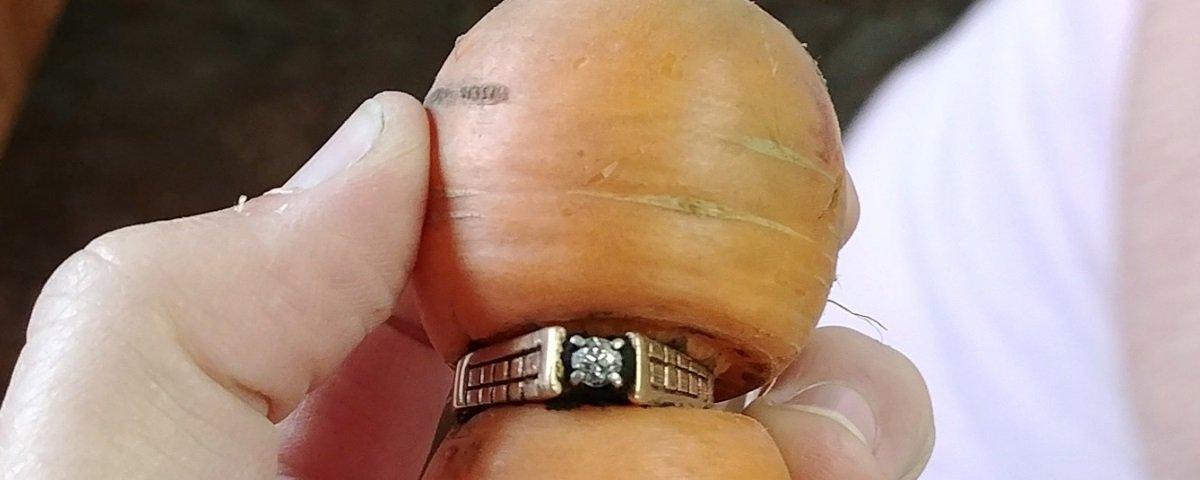 Achados e perdidos: mulher encontra anel preso em cenoura depois de 13 anos