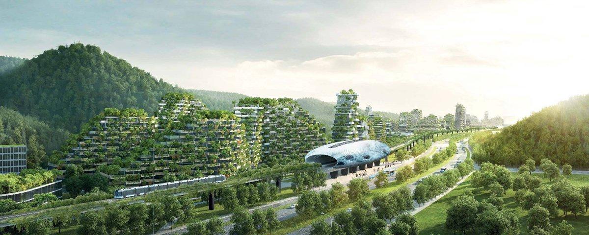 O ambicioso projeto chinês de construir uma cidade com 1 milhão de plantas