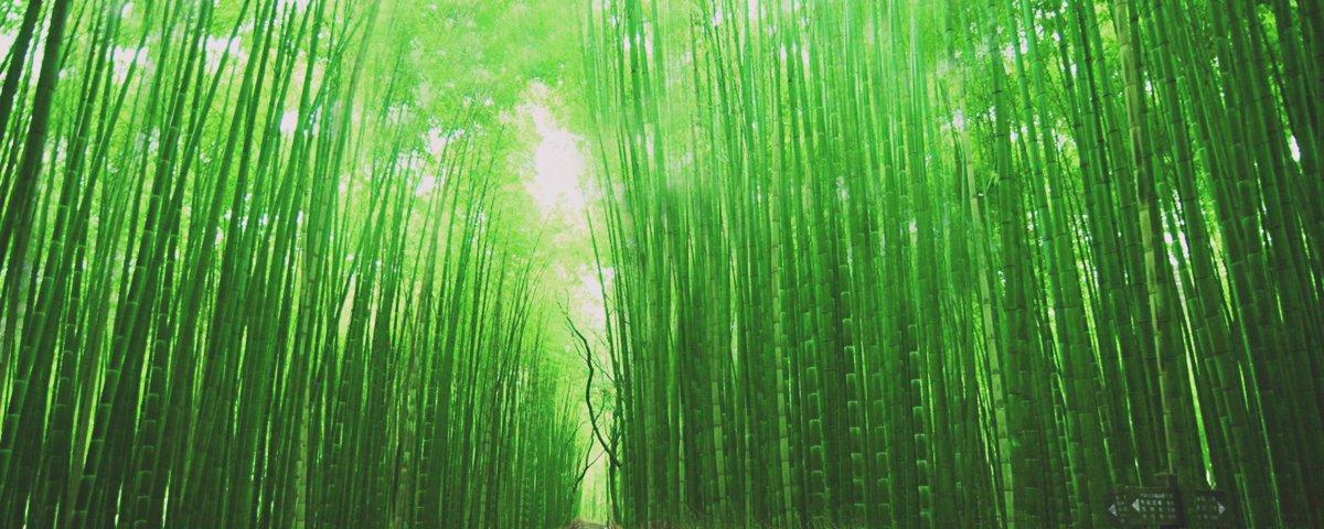 15 vezes em que a natureza pareceu manipulada digitalmente