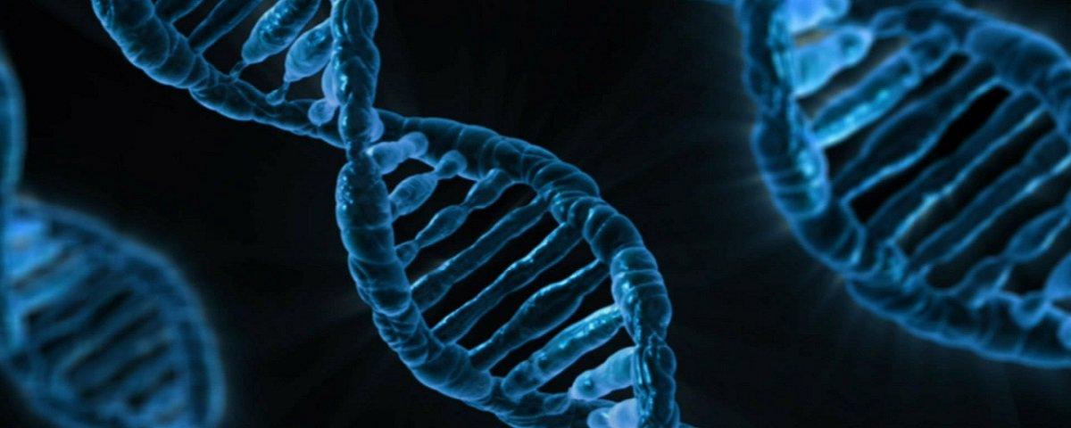 CRISPR no prato: EUA autoriza modificação genética de alimentos