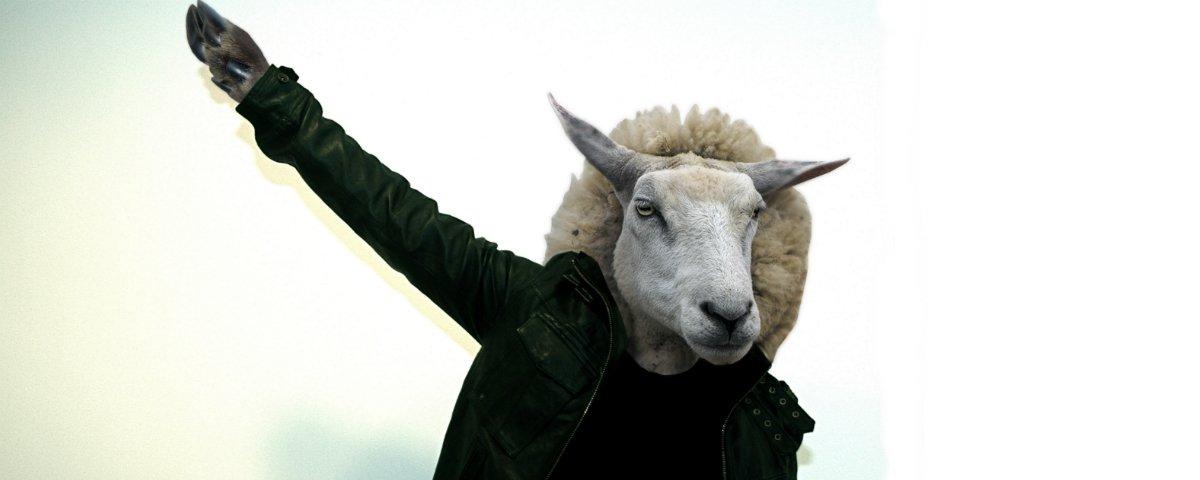 Cientistas criaram um híbrido entre homem e ovelha: o que isso significa?