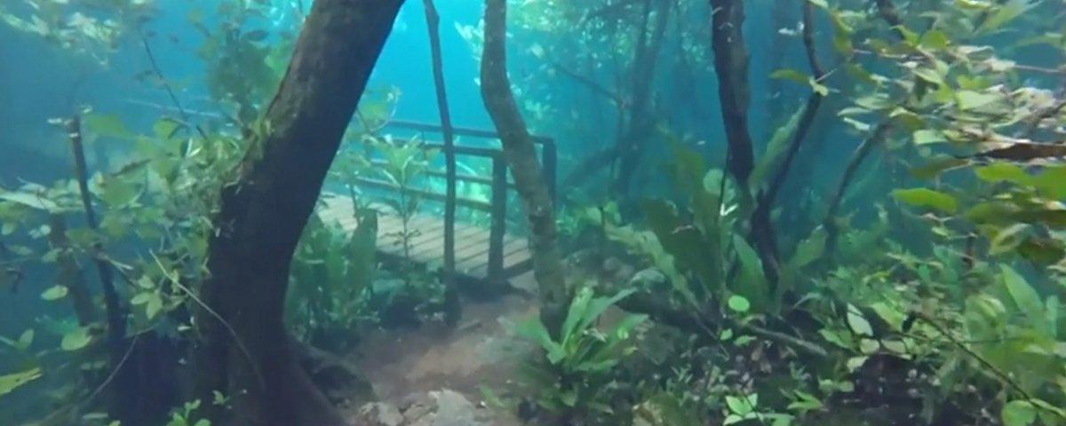 O fenômeno raro que deixa uma trilha no Mato Grosso do Sul debaixo da água