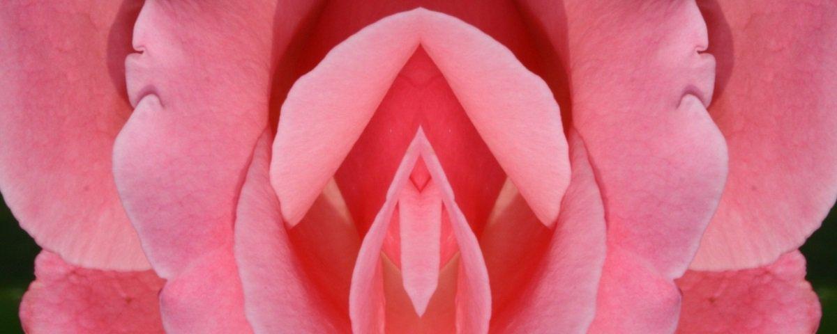 Em vez de comprar flores, aprenda onde está o clitóris
